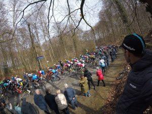 Flanders riders