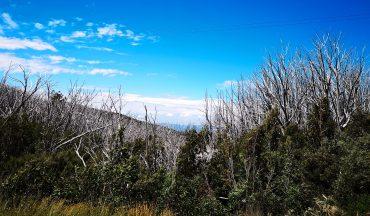 Marysville and Lake Mountain