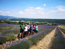 France Cycling Holidays and Bike Tours