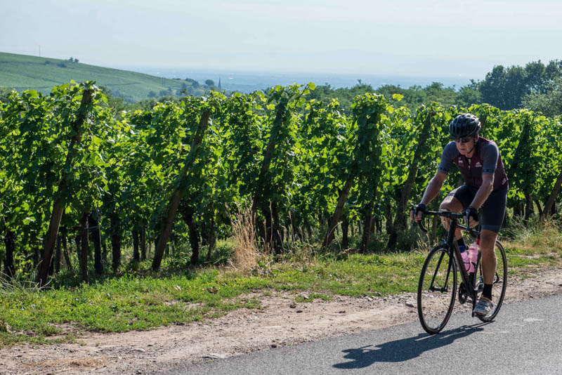 cycling france wine areas tour de france