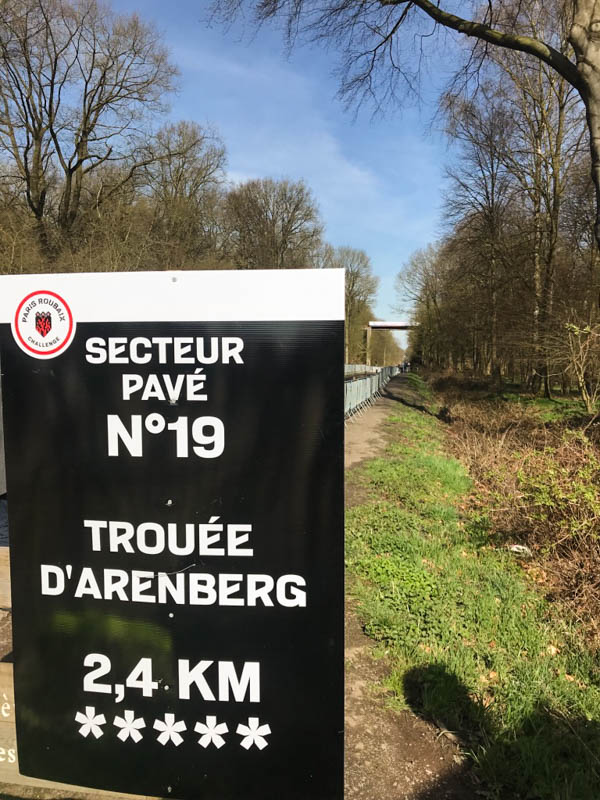 france bike tours cycling holidays arenberg forest