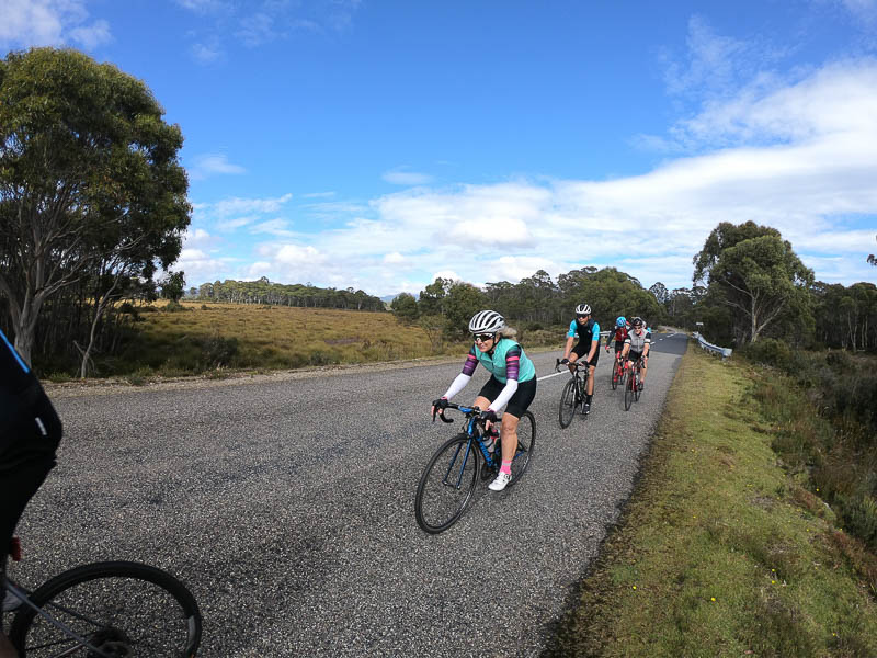 Group cycling in Tasmania